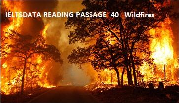 IELTSDATA READING PASSAGE 40Wildfires