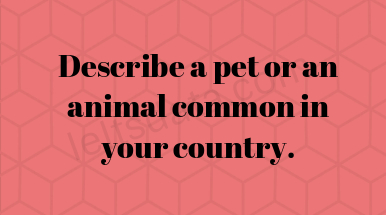 Describe a pet or an animal common in your country.