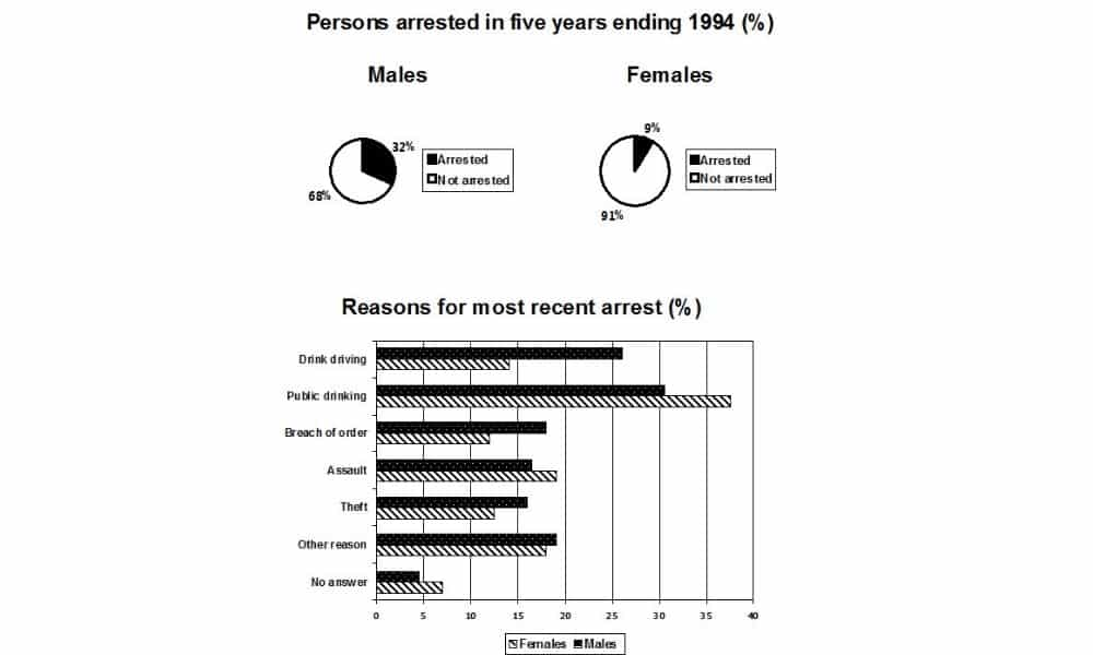 The pie chart shows the percentage of persons arrested in the five years ending 1994 and the bar chart shows the most recent reasons for arrest.