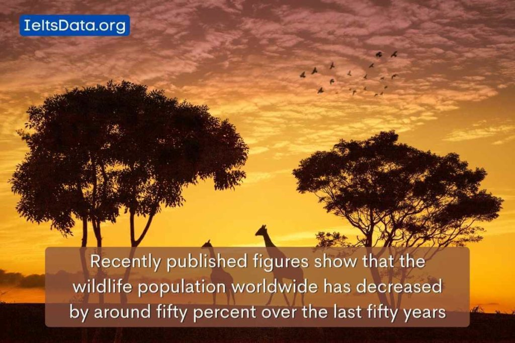 Recently published figures show that the wildlife population worldwide has decreased by around fifty percent over the last fifty years