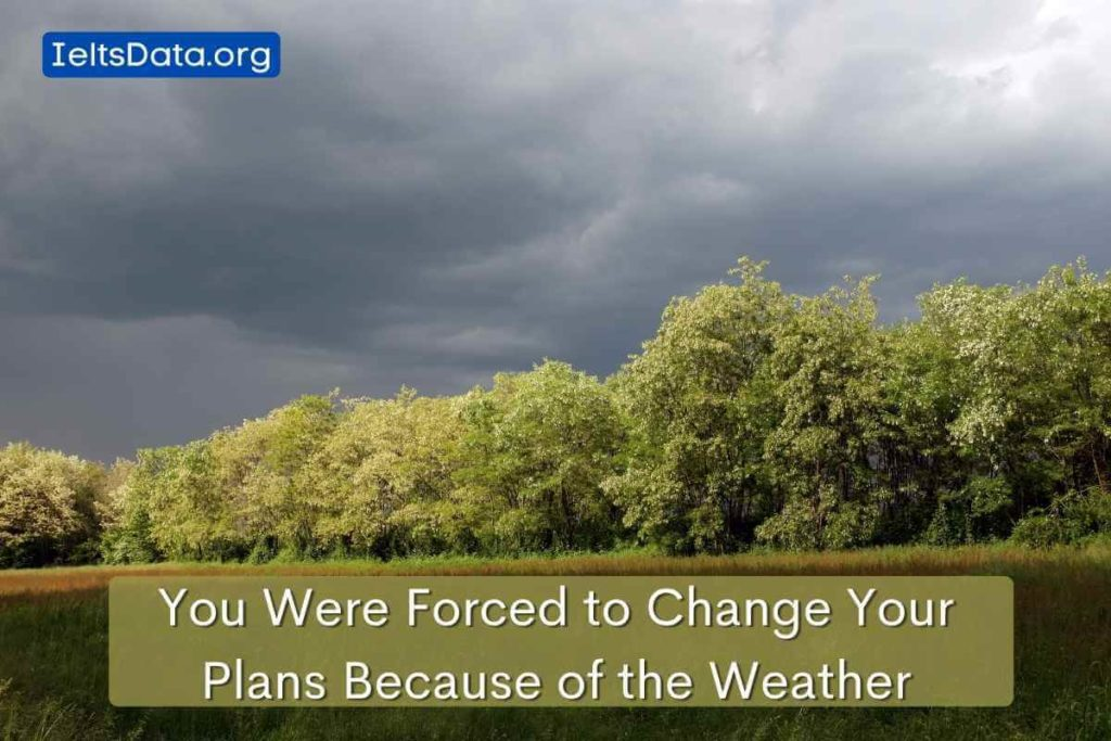 You Were Forced to Change Your Plans Because of the Weather